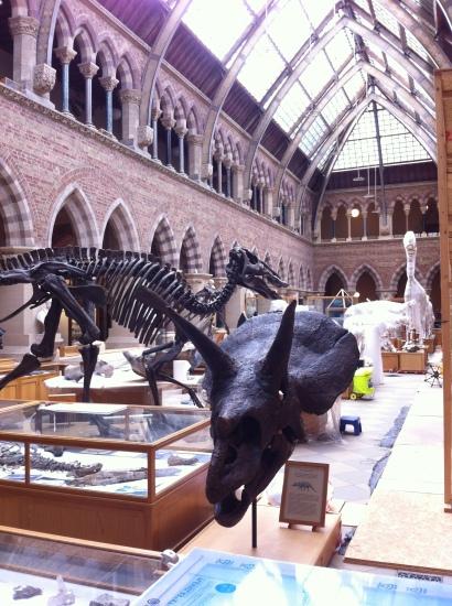 Museo de Historia Naural de la Universidad de Oxford