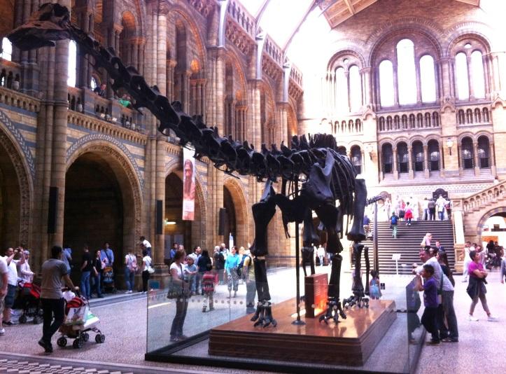 Dino at the Natural History Museum, London
