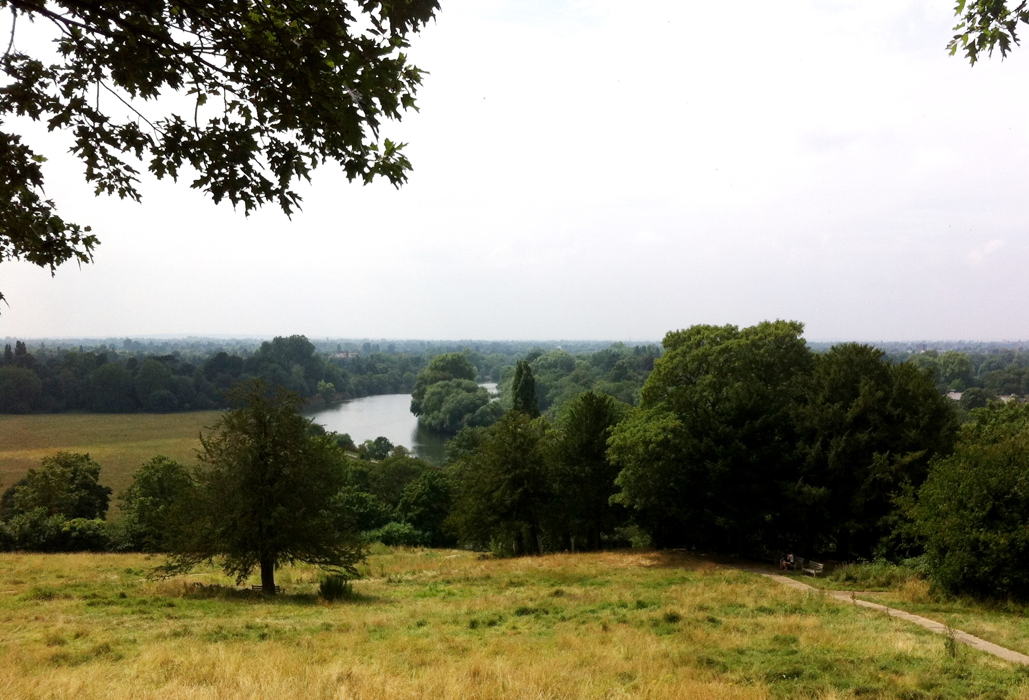Thames river seen from Richmond.