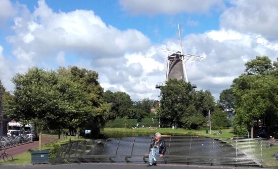 Molino de Valk, Leiden